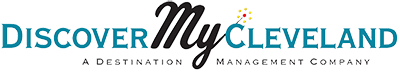 DMC_logo_footer